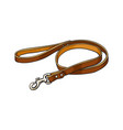simple pet cat dog brown leather leash with vector image