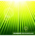 Summer sunburst on green background vector image vector image