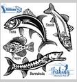 tuna snook crappie and barrakuda - fishing vector image vector image