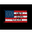 american text flag - born in usa vector image vector image