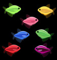 colorful fish on black background vector image vector image