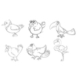 Different birds in doodle design vector image vector image