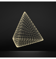 Pyramid Regular Tetrahedron Platonic Solid Grid vector image