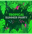 summer tropical design for banner or flyer vector image