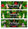 summer tropical vacation and holiday banner vector image vector image