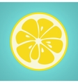 Yellow lemon grapefruit stylish icon Juicy fruit vector image