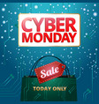 design cyber monday graphics for the site vector image vector image