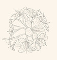 floral background with blooming lilies vector image vector image