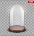 glass dome on transparent background vector image vector image