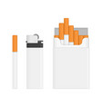 lighter and pack of cigarettes vector image