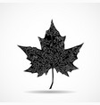 maple leaf on white background vector image vector image