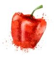 pepper logo design template nutrition or vector image vector image