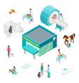 pet care concept isometric veterinary clinic vector image vector image