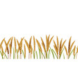 realistic wheat cereals agriculture horizontal vector image vector image