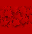 canada day design of red maple leaves background vector image vector image