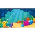 Cartoon Sea Cave With Shells vector image