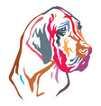 colorful decorative portrait of dog great dane vector image vector image