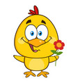 cute yellow chick character holding a flower vector image vector image