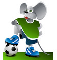 Football mouse vector image vector image