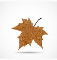 maple leaf on white background vector image
