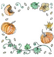watercolour vegetable pumpkin plant with leaves vector image vector image