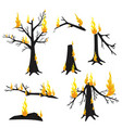 a burning tree forest fire vector image
