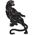 black panther tattoo vector image vector image