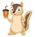 cartoon chipmunk holding an acorn vector image vector image