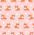 Cute corgi pattern on pink background vector image