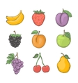 Fruit and berry set vector image vector image