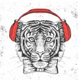 hipster animal tiger hand drawing muzzle of tiger vector image vector image