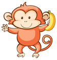monkey and banana on white background vector image