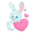 funny cute bunny with heart love cartoon vector image