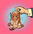 hand kitten holds by the scruff vector image vector image