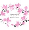 magnolia flowers vector image vector image