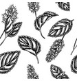 seamless pattern with black and white peppermint vector image vector image