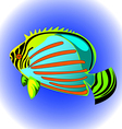 exotic fish vector image