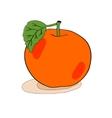 Orange Apple hand-drawn vector image vector image