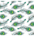 seamless pattern peacock feathers vector image vector image