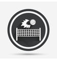 Volleyball net fireball icon Beach sport symbol vector image vector image