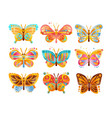 beautiful colorful butterflies set vector image vector image
