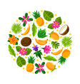 circle with tropical fruit pattern vector image vector image