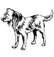 decorative standing portrait of dog russian toy vector image vector image