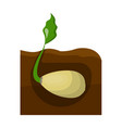 root single icon in cartoon style root vector image vector image