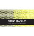 square pattern set citrus sparkles seamless tile vector image vector image