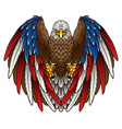 an eagle with an american flag vector image