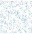 eucalyptus twigs hand drawn seamless pattern vector image