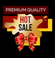 hot sale and premium quality with bow card vector image