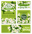 spring floral design for holiday greetings vector image vector image