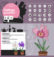 template for indoor plant cattleya tipical vector image vector image